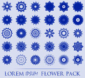 Pack of 30 transparent blue abstract geometric flowers logo template. Business abstract icon Royalty Free Stock Photos