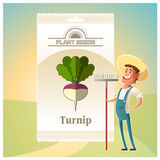 Pack of Turnip seeds icon Stock Images