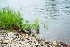 Packa ihop av floden arkivfoto