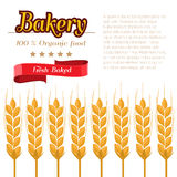 Package design for Bakery. Flat and solid design vector illustration Stock Images