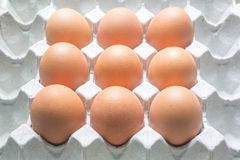Package of eggs Stock Photography