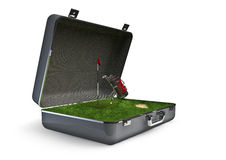 Package holiday golf Royalty Free Stock Photos
