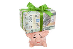 Package and piggy. Mumps with package money on back on white Royalty Free Stock Photos