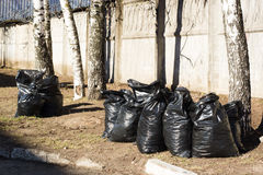 Packages with fallen leaves and debris after lawn cleaning. The Royalty Free Stock Photography