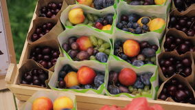Packages with fresh fruit in box on wedding day in forest. In middle packets with colorful mix of peach, grape, plum, on sides packs with berries. In center stock footage