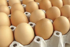 Packaging chicken egg Royalty Free Stock Images