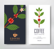Packaging design coffee. Packaging design for a coffee. Vector template package. Coffee branch vector illustration. Coffee plant with coffee berry Stock Photo