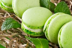 In the packaging substrate lies souffle with apple flavor with mint, background macaron stock photography
