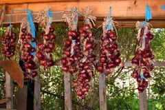 Packar av lökar som hänger på ett skjul för att torka Stege- och trädgårdbakgrund fotografering för bildbyråer