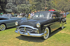Packard Touring Sedan. This is a 1951 Packard Durham Touring Sedan which in its day would have been considered an upscale family car. It competed with Cadillac Royalty Free Stock Photography