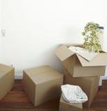 packat flytta sig för askar Royaltyfria Bilder