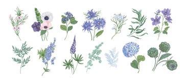 Packe av detaljerade teckningar av härliga floristic blommor och dekorativa örter som isoleras på vit bakgrund Uppsättning av royaltyfri illustrationer