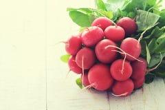 Packe av ljusa nya organiska rädisor Royaltyfri Foto