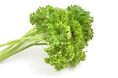 Packe av parsley arkivbild