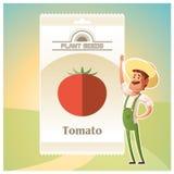 Packe av tomatfrö Royaltyfri Bild