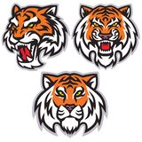 Packe för design för Tiger Head Logo Set Template vektormaskot vektor illustrationer