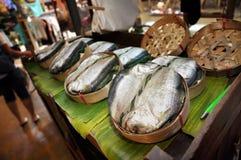 Packe för fisk för T-tröjadesignMackerel Arkivbilder