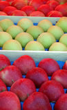 Packed apples. Pic of packed red apples Royalty Free Stock Photos