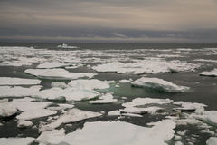 Packed ice in Arctic sea Royalty Free Stock Photography