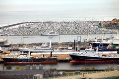 Packed marina & fishing vessels, Seattle WA. Stock Photography
