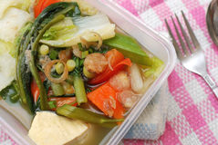 Packed meal with healthy vegetables. Takeout meal with healthy vegetable variety. Suitable for concepts such as diet and nutrition, healthy lifestyle, and food Stock Photography