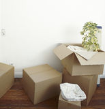 Packed moving boxes. Moving boxes packed with household items wrapped in paper Royalty Free Stock Images