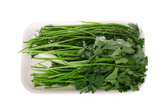 Packed parsley dill Royalty Free Stock Images