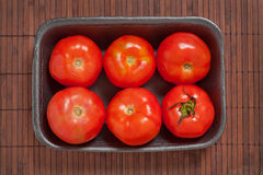 Packed tomatoes. Stock Images