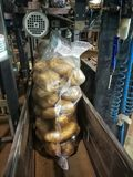 Packing bagged potatoes Royalty Free Stock Image