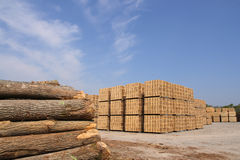 Packing crates production. Sawn trees and wooden packing crates (horizontal Stock Image