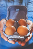 Packing eggs Royalty Free Stock Photos