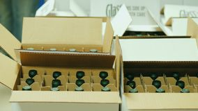 Packing of finished products in the winery. Bottles with white wine are put in cardboard boxes