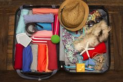 Packing a luggage for a new journey and travel for a long weeken. D, top view Royalty Free Stock Photography