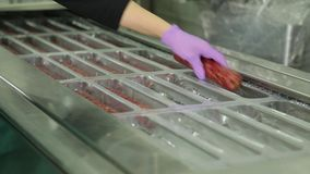 Packing sausage stock video