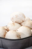 Packing white mushrooms in a plastic black box Royalty Free Stock Image