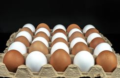 Packing of yellow and white chicken eggs arranged in a diagonal composition on a black background.  royalty free stock images