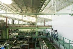 Packinghouse do abacate dos turistas Fotografia de Stock Royalty Free