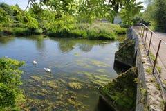 Packpferd-Brücke auf dem Fluss Avon bei Barton Farm Country Park, Bradford auf Avon, Großbritannien stockfotos