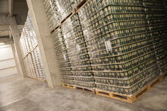 Packs of beer in a brewery warehouse Stock Image