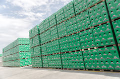 Packs of bottled beer in brewery storage lot Stock Photos