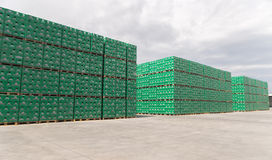 Packs of bottled beer in brewery storage lot Stock Photography