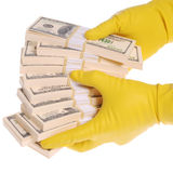 Packs of money in hands. Hands are in yellow gloves. Isolated on white. Clipping path included Stock Photo