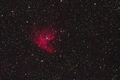 Pacman nebulosa arkivbilder