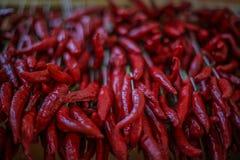 Pacote de Chili Peppers Fotos de Stock