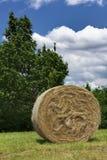 Pacote de feno em um campo Foto de Stock Royalty Free