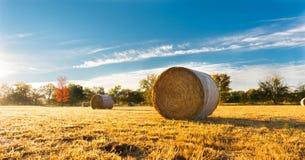 Pacote de feno em um campo de exploração agrícola imagens de stock