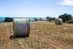 Pacote de feno redondo no campo com opini?o de c?u azul e de mar, Sic?lia foto de stock royalty free