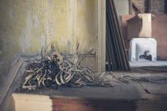 Pacote de fios e de cabos no assoalho Fotografia de Stock Royalty Free