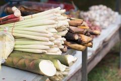 Pacote do close up de nardo orgânico fresco para a venda a retalho em l Imagens de Stock