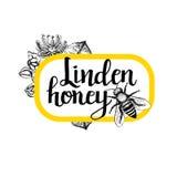 Pacote para a abelha do mel Projeto gráfico preto e branco do vintage Fotos de Stock